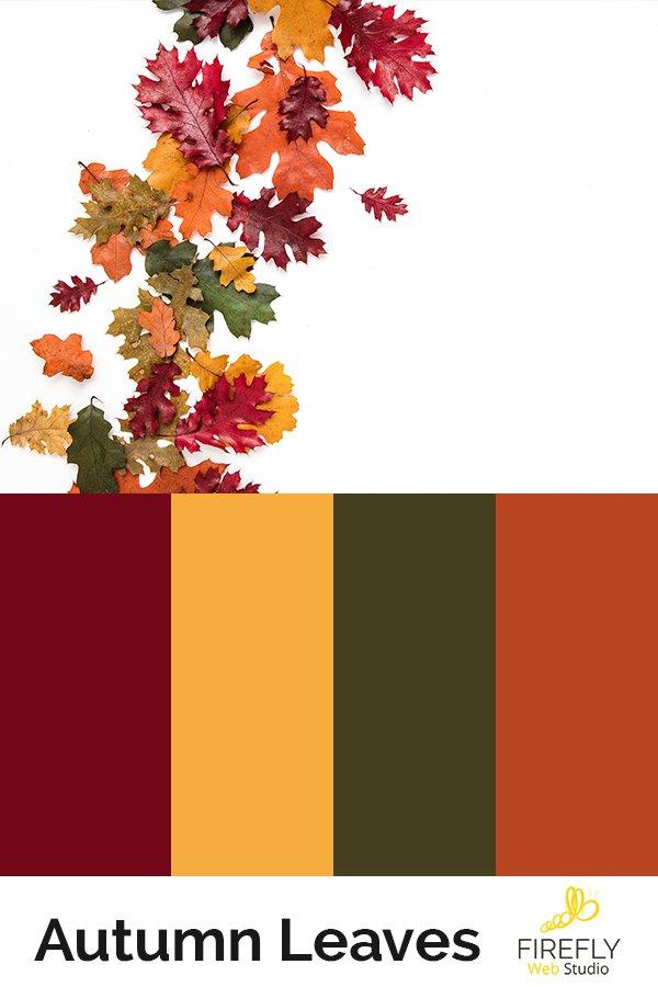 autumn color scheme fall colors