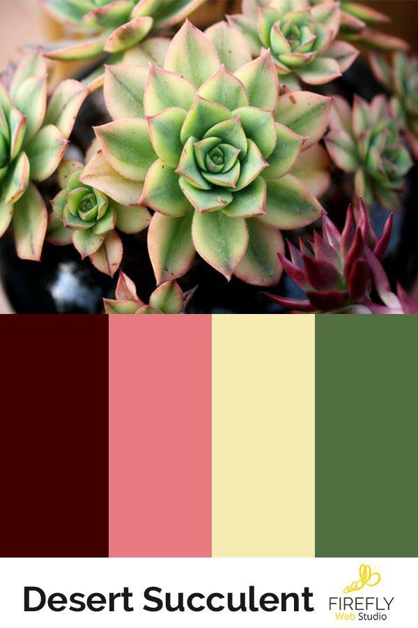 perfect color scheme for succulent website