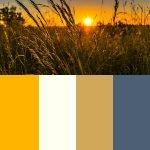 summer color scheme for new website