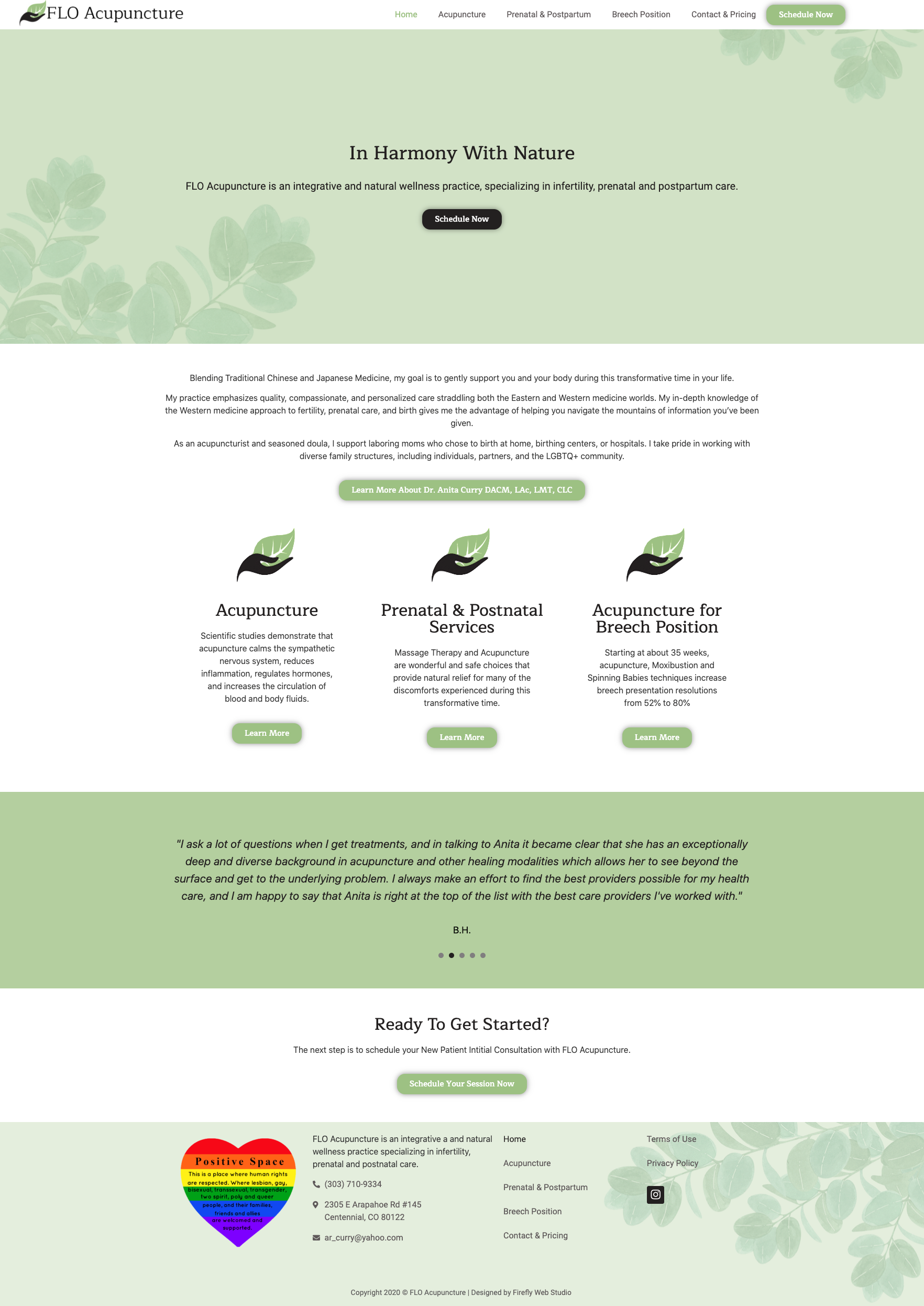 acupuncture website design for homepage